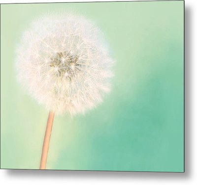 Make A Wish - Large Metal Print by Amy Tyler