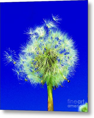 Metal Print featuring the digital art Make A Wish by Rodney Campbell
