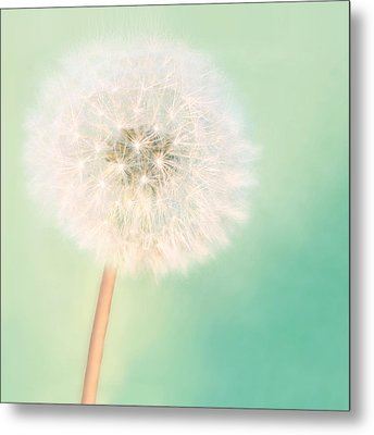 Make A Wish - Square Version Metal Print by Amy Tyler
