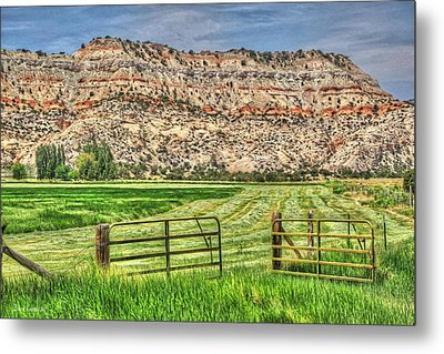 Make Hay While The Sun Shines Metal Print by Donna Kennedy
