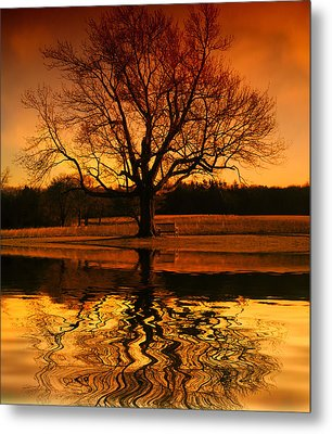 Making The Most Of Your Time Alone Metal Print by Daphne Sampson