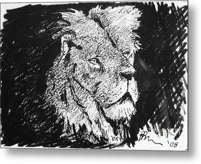 Male Lion Portrait Metal Print