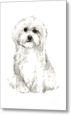Maltese Abstract Dog Poster Metal Print by Joanna Szmerdt