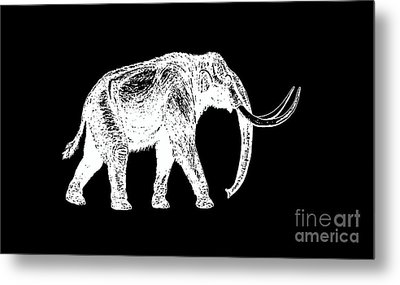 Mammoth White Ink Tee Metal Print by Edward Fielding