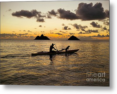 Man And Dog In Canoe Metal Print by Dana Edmunds - Printscapes