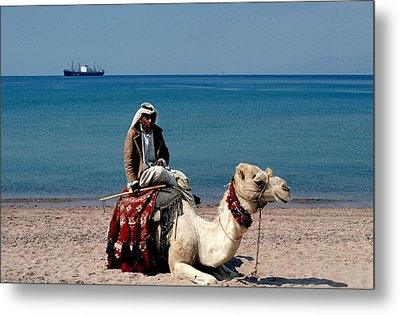Man With Camel At Red Sea Metal Print by Carl Purcell