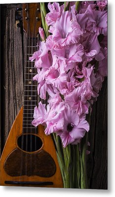 Mandolin And Glads Metal Print