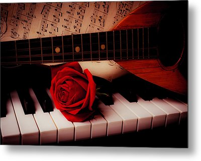 Mandolin And Rose Metal Print by Garry Gay