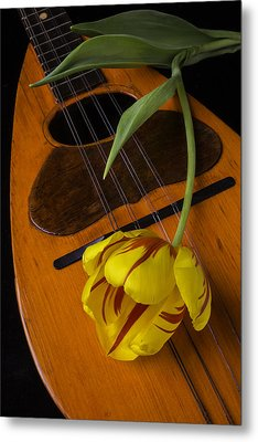 Mandolin With Red And Yellow Tulip Metal Print