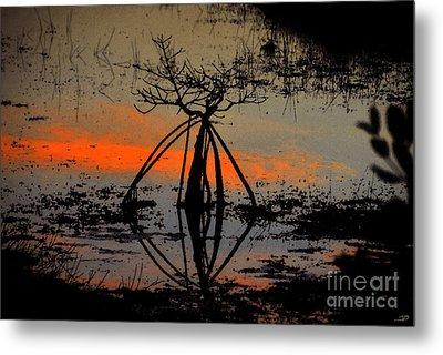 Mangrove Silhouette Metal Print by David Lee Thompson