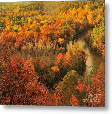 Manistee River Morning Metal Print by Terri Gostola