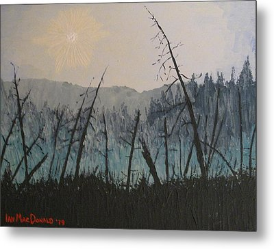 Metal Print featuring the painting Manitoulin Beaver Meadow by Ian  MacDonald