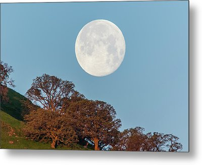 Metal Print featuring the photograph March Moonset by Marc Crumpler