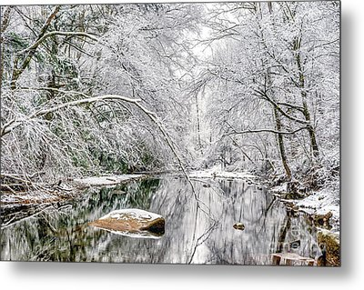 Metal Print featuring the photograph March Snow Along Cranberry River by Thomas R Fletcher
