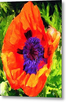 Margo's Poppy Metal Print by Randy Sprout