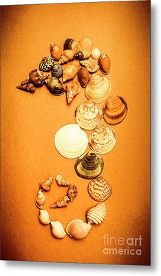 Marine Seashell Seahorse Design Metal Print