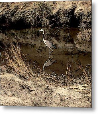 Marsh Bird Metal Print