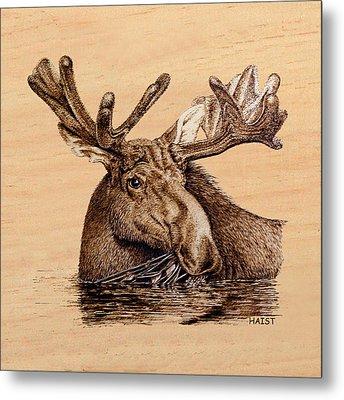 Marsh Moose Pillow/bag Metal Print by Ron Haist