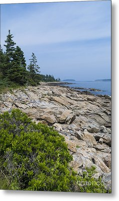 Marshall Ledge Looking Downeast Metal Print by Patrick Fennell