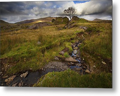 Metal Print featuring the photograph Marshland At Rhyd Ddu, Wales by Richard Wiggins