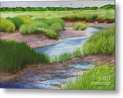 Marshside Creek Metal Print