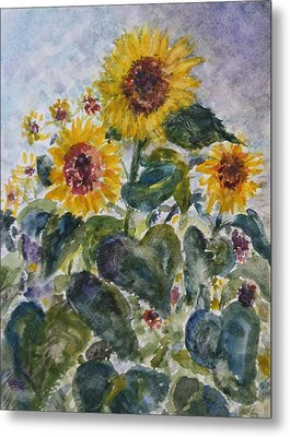 Martha's Sunflowers Metal Print by Quin Sweetman