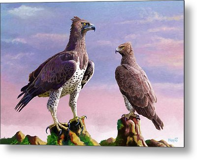 Martial Eagles Metal Print by Anthony Mwangi