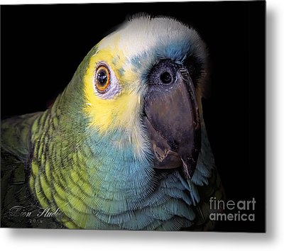Marty The Blue Front Amazon Metal Print