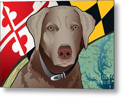 Maryland Silver Lab Metal Print