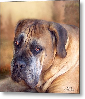 Mastiff Portrait Metal Print by Carol Cavalaris