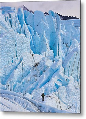 Matanuska Glacier Alaska Hiking Metal Print by Sam Amato