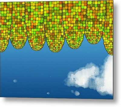 Math Corn Metal Print by GuoJun Pan