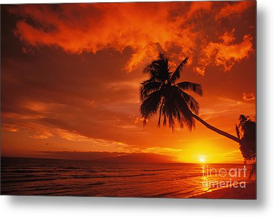 Maui, A Beautiful Sunset Metal Print by Ron Dahlquist - Printscapes