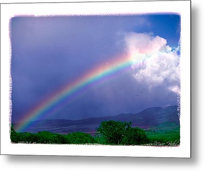 Metal Print featuring the photograph Maui Rainbow by Marie Hicks