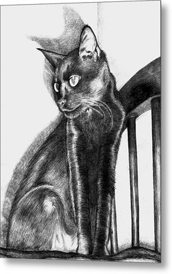 Metal Print featuring the drawing Maurice  by Shawna Rowe