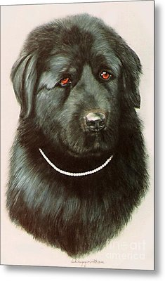 Metal Print featuring the painting Maximillan And His Diamond Collar. by DiDi Higginbotham