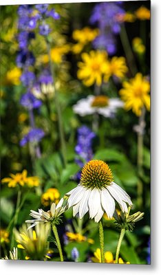 Metal Print featuring the photograph May Flowers by Steven Sparks