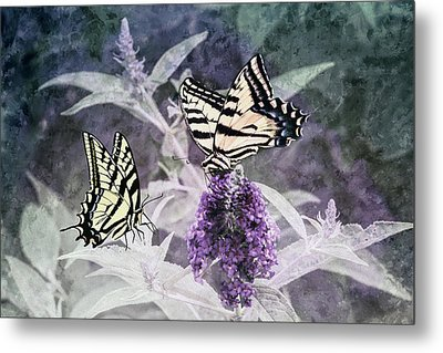May I Join You Metal Print by Diane Schuster