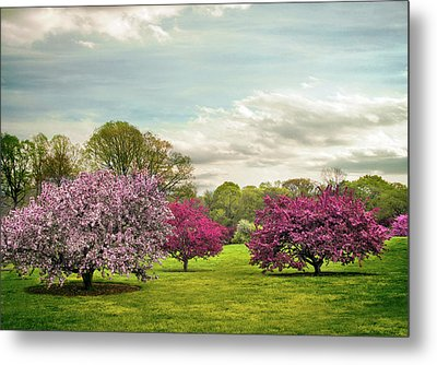 Metal Print featuring the photograph May Meadow by Jessica Jenney