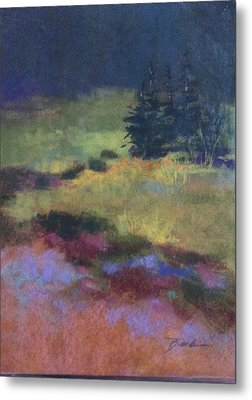 Meadow At Dusk Metal Print