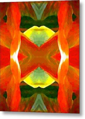 Meditation Metal Print by Amy Vangsgard