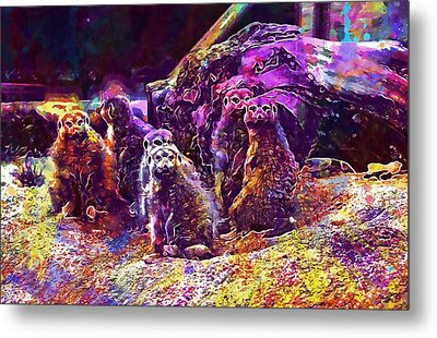 Meerkat Meerkats Family Group  Metal Print