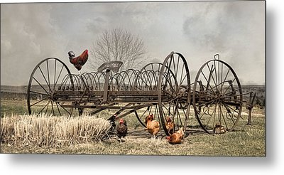 Metal Print featuring the photograph Meeting At Rusty Rake by Robin-Lee Vieira