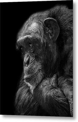 Melancholy Metal Print by Paul Neville