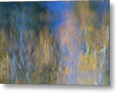 Merced River Reflections 14 Metal Print by Larry Marshall
