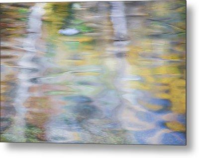 Merced River Reflections 6 Metal Print
