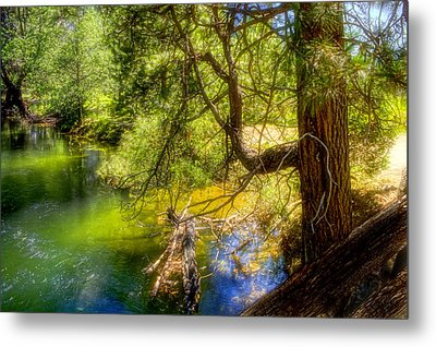 Metal Print featuring the photograph Merced River2 by Michael Cleere