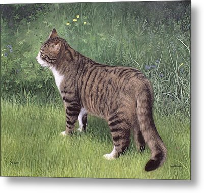 Merlin Portrait Metal Print