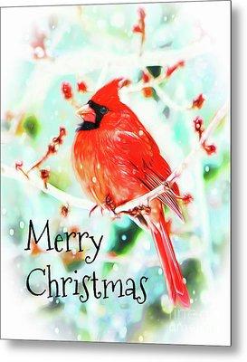Merry Christmas Cardinal Metal Print