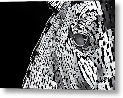 Metal Horse Abstract Metal Print by Tim Gainey